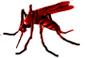 Recomendaciones ante el Dengue