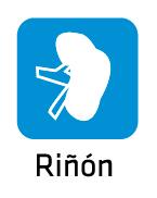 rinon_01